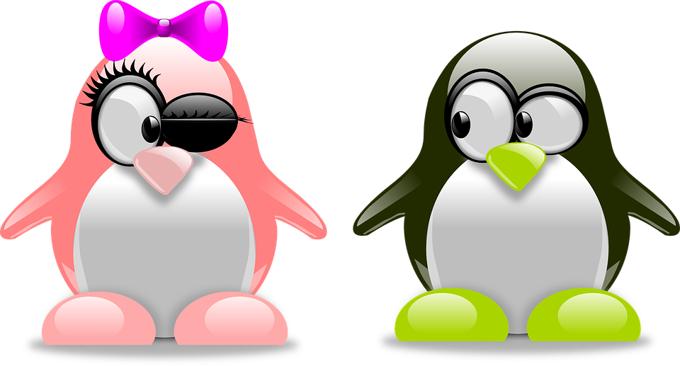 penguins-157418_960_720